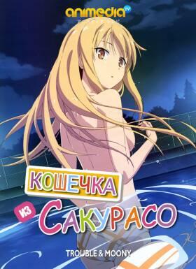 Постер аниме Кошечка из Сакурасо